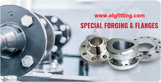 Stainless Steel Flanges Supplier-www.otgfitting.com
